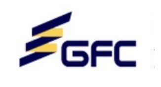 GEFI logo