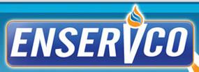ENSV logo